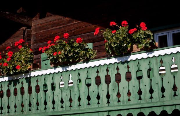 фото отеля Hotel Gasthof Mitteregger  изображение №5