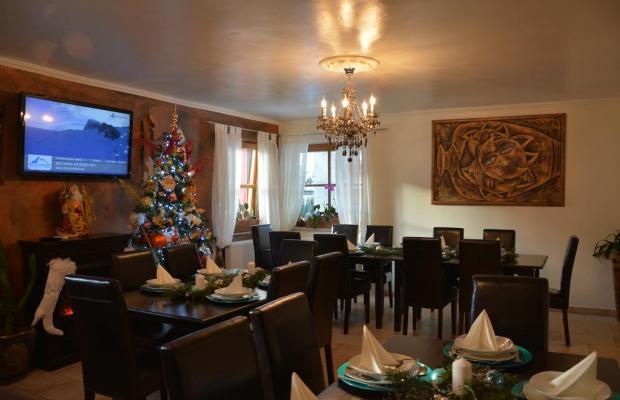 фотографии отеля Pension Pinzgauerhof изображение №23