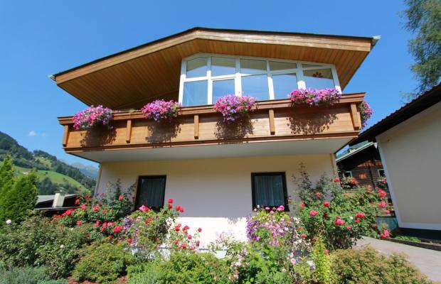 фотографии отеля Michel Apartments изображение №15