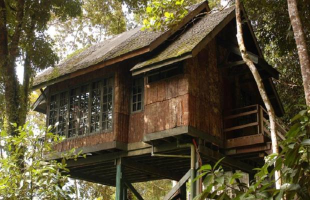 фото отеля Permai Rainforest Resort изображение №1