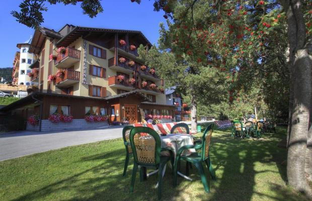 фото отеля Hotel Alpina изображение №49