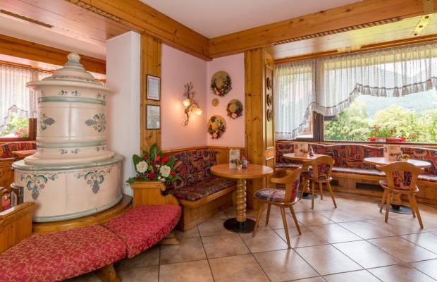 фотографии отеля Hotel Bellavista изображение №3