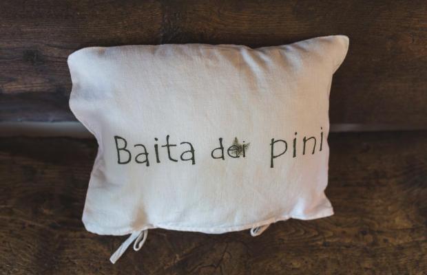 фото Baita dei Pini изображение №14