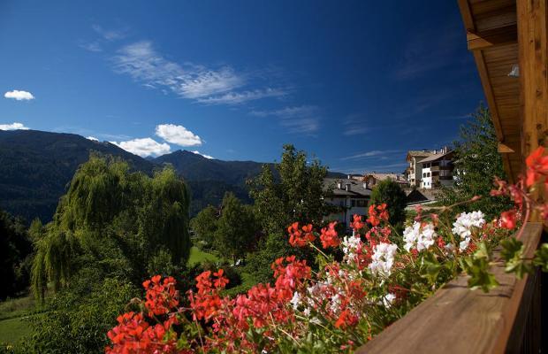 фото Albergo Bellaria изображение №6