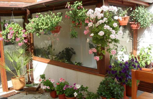 фотографии отеля Надежда (Nadejda) изображение №35