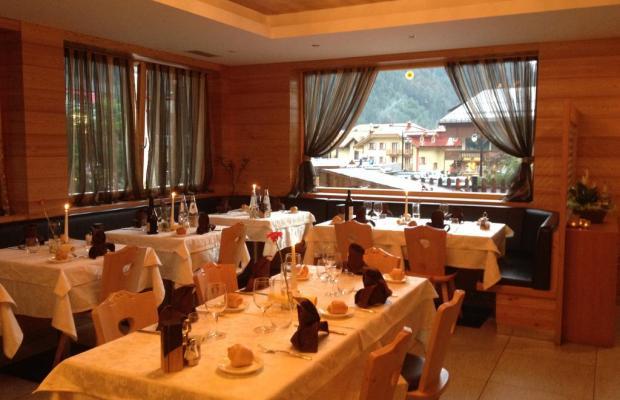 фото Hotel Ariston изображение №10