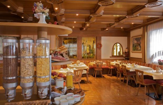 фотографии отеля Diana Hotel изображение №11