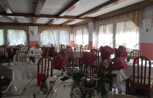 фотографии Joy Hotel Fedaia  изображение №8