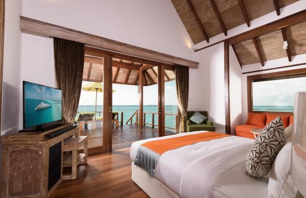 фотографии отеля Dhigufaru Island Resort изображение №43