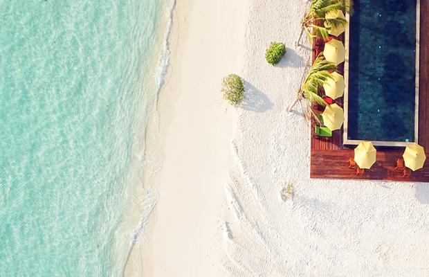 фотографии отеля Dhigufaru Island Resort изображение №3