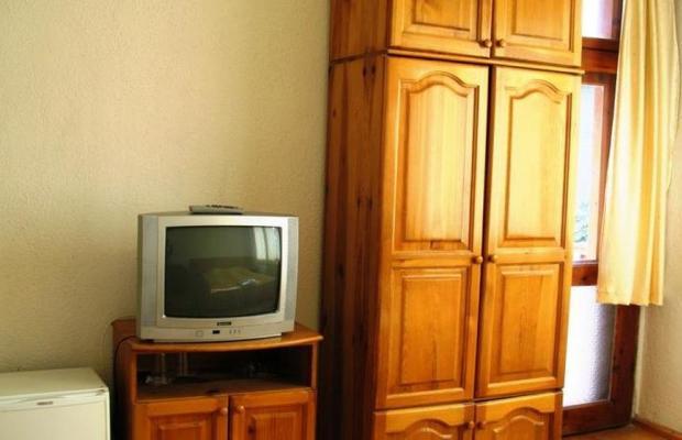 фотографии Donchev (Дончев) изображение №12