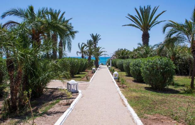 фотографии Palm Beach Club Hammamet изображение №20