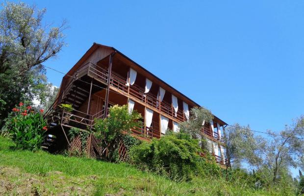 фото отеля Villa Oliva (Вилла Олива) изображение №1
