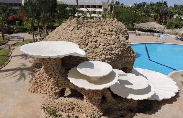 фото отеля Coral Resort Nuweiba (ех. Hilton Nuweiba Coral Resort) изображение №37