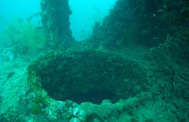 фото отеля Coral Bay Beach and Dive Resort изображение №25