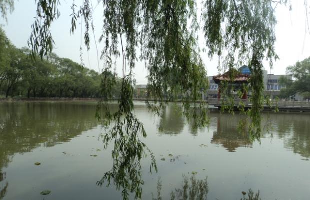 фотографии отеля Танганцзы (Восточный прием) изображение №15