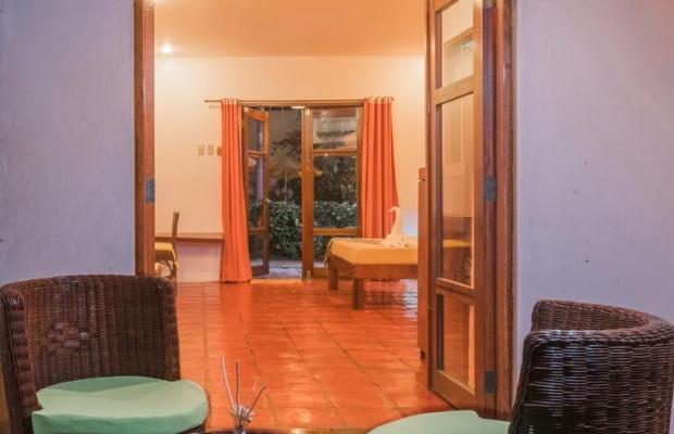 фотографии отеля Acacia Tree Garden Hotel изображение №7