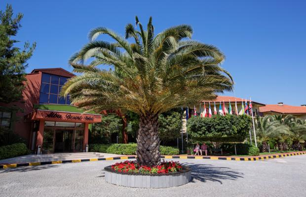 фотографии Alba Resort изображение №28