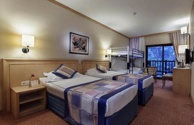 фотографии отеля Alba Resort изображение №11