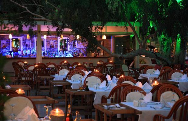 фото отеля Okaliptus изображение №5