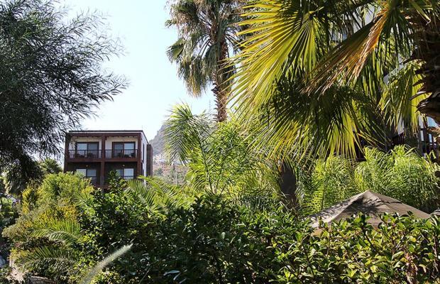 фотографии отеля Olira Boutique Hotel & Spa изображение №67