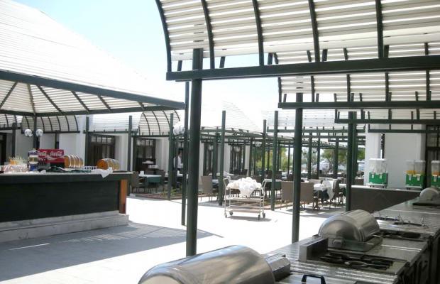 фотографии отеля Dora Club Asa Beach (ex. Asa Club Holiday Resort) изображение №7