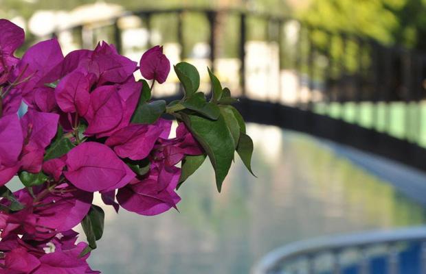 фото отеля Ale Suite изображение №17