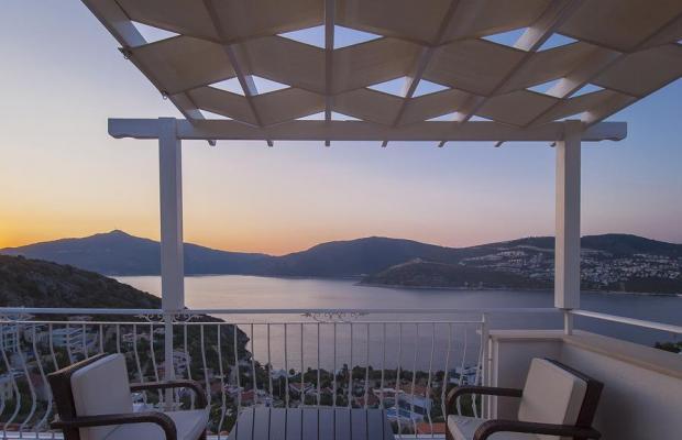 фото отеля  Villa White Star изображение №29