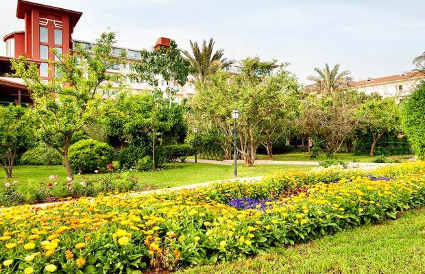 фото отеля Belconti Resort изображение №49