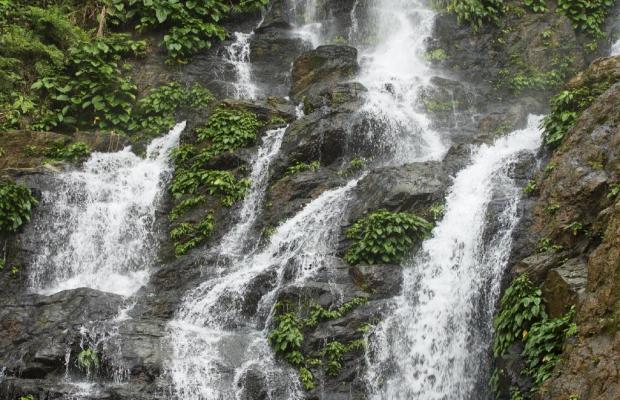 фотографии отеля Tropicana Castle Dive Resort изображение №31