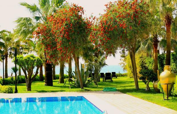 фотографии отеля Harmony Park Villa Augusto изображение №15