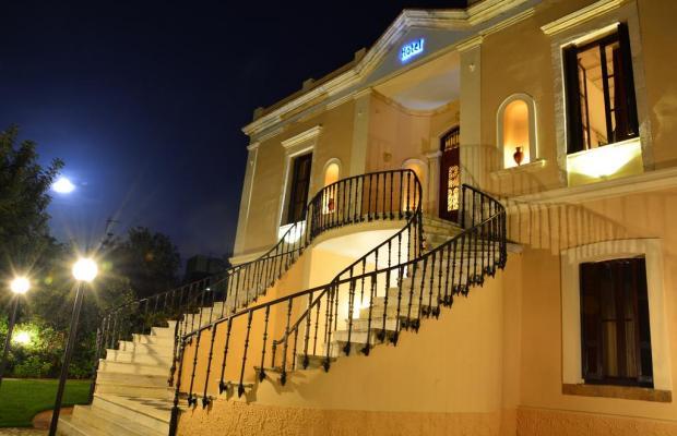 фото Halepa изображение №14