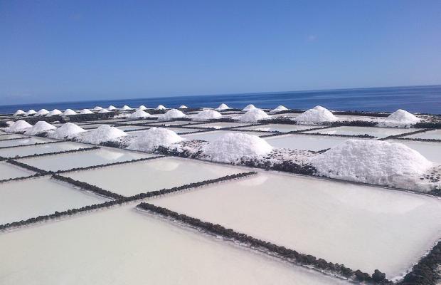 фотографии отеля Playa Delphin изображение №19