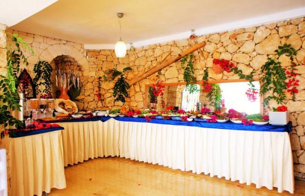 фотографии отеля Amphora Hotel изображение №19