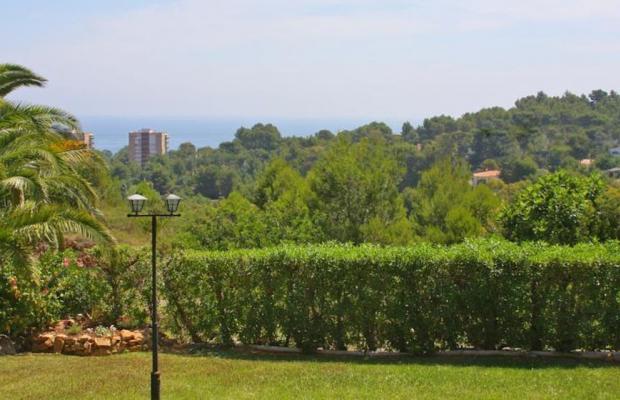 фото Parque Denia изображение №18