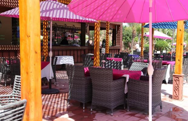 фото отеля Palm Plaza Hotel & Spa изображение №9