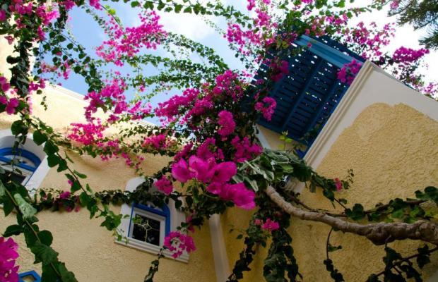 фотографии отеля Zeus изображение №23