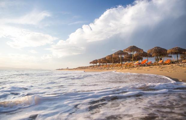 фото отеля Plaza Beach изображение №81
