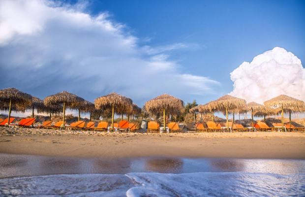 фотографии отеля Plaza Beach изображение №79
