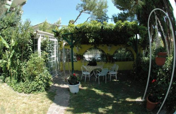фото Conchiglia Verde изображение №26