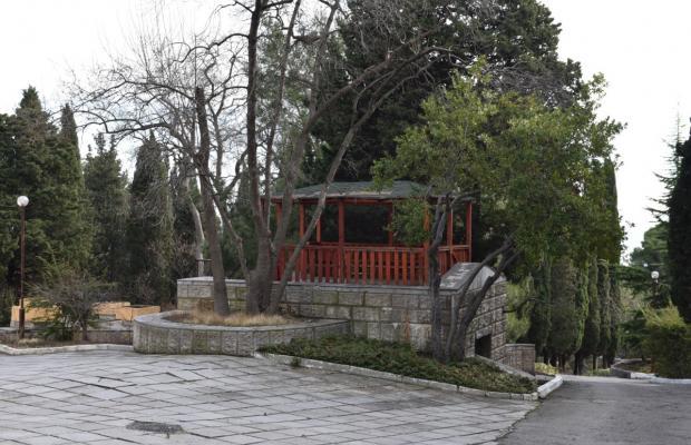 фото Дом творчества писателей им. А.П. Чехова изображение №38