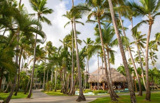 фотографии Impressive Resort & Spa изображение №24